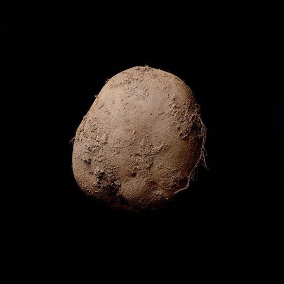 Ritratto di patata da un milione di euro kevin abosch